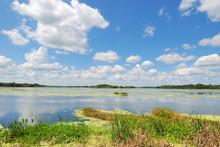 Man-made Wetlands- Orlando Wetlands Park #3