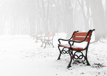Red Bench In The Fog In Winter