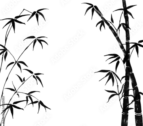 Canvas Print Silhouette of branches of a bamboo on a white background