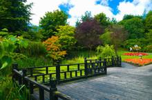 Formal Garden In The Oriental ...