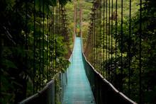 A Hanging Bridge In The Costa ...