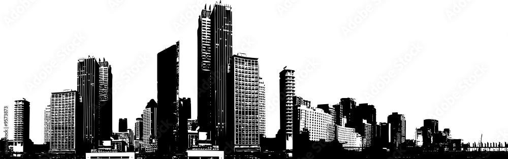 Fototapeta Black and white panorama city.