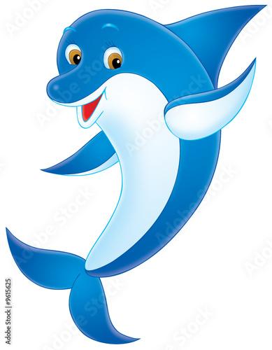 Foto-Plissee - Dolphin (von Alexey Bannykh)