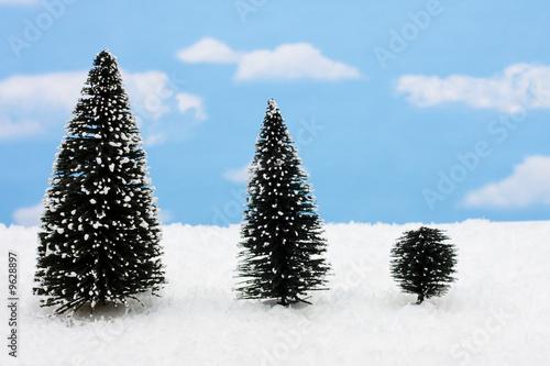 Fotografija  Three evergreen trees on snow with snowflake background
