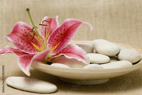 Akustikstoff - Lilie und weiße Kieselsteine