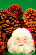 canvas print picture - Santa and Pine cones on green background