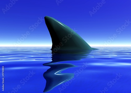 aileron de requin Wallpaper Mural