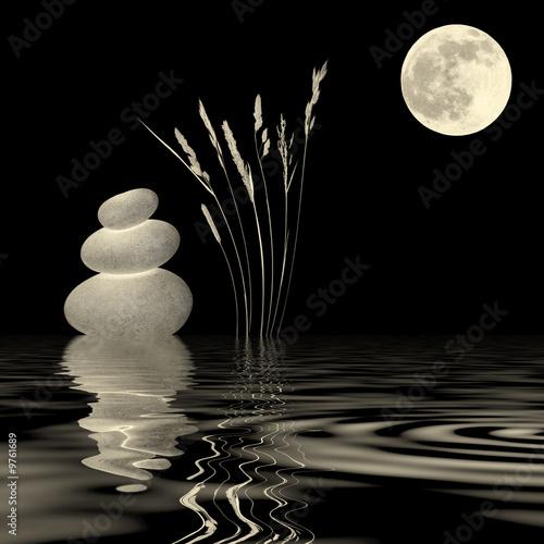 Fototapety, obrazy: Golden Moonlight