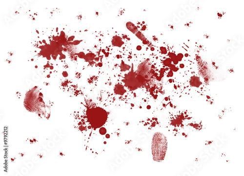 Photo traces de sang