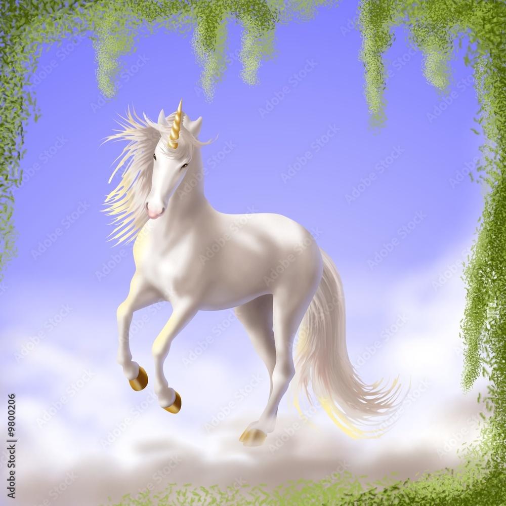 Foto-Flächenvorhang ohne Schienensystem - unicorno