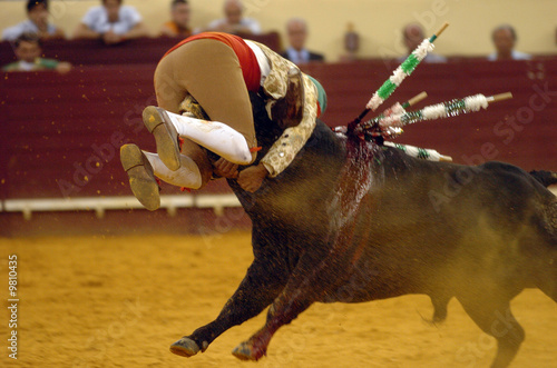Photo sur Aluminium Corrida bullfight