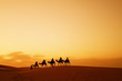 canvas print picture Caravan in Sahara desert