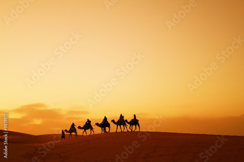 Photo sur Aluminium Desert de sable Caravan in Sahara desert