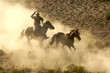 canvas print picture Cowboy galloping and roping wild horses through the desert