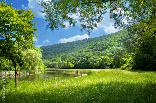 Tuinposter Landschappen summer landscape with river and blue sky