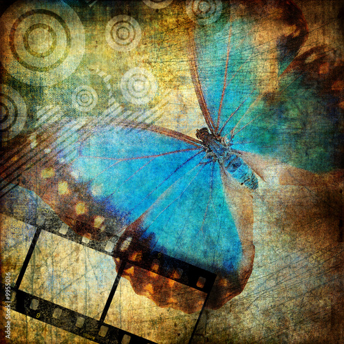 Garden Poster Butterflies in Grunge grungy artwork with butterfly