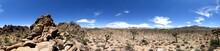 Joshua Tree Park 360° Panorama