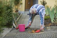 Senior Is Sweeping His Sidewalk In Autumn.