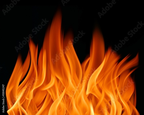 Fototapety, obrazy: Fire flames background (texture)