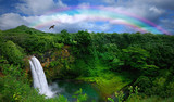 Fototapeta Rainbow - Waterfall in Kauai With Rainbow and Bird Overhead