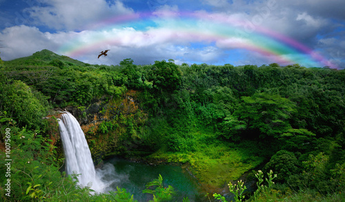 Waterfall in Kauai With Rainbow and Bird Overhead