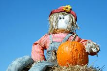 Vivid Blue Sky And A Homemade Scarecrow With Pumpkin.