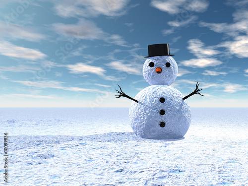 Fototapeta Bonhomme de neige