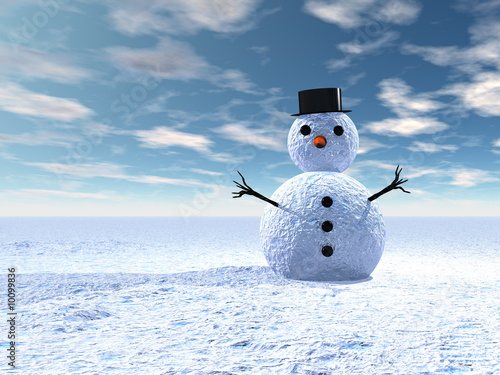 Obraz Bonhomme de neige - fototapety do salonu