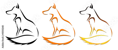 Photo  fox illustration
