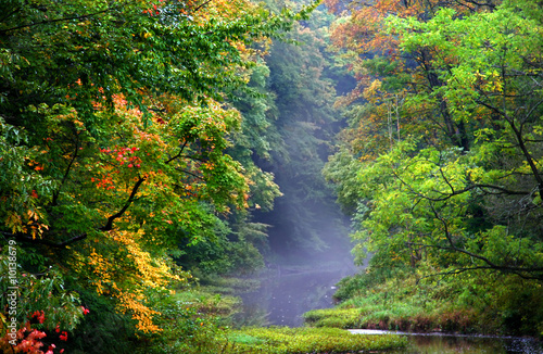 Fotografie, Obraz Beautiful Autumn Morning
