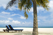 Concept photo of tropical beach with chair