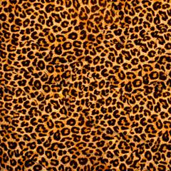 Fototapetadecorative leopard texture