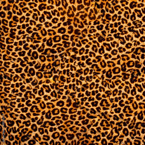 Photographie  Texture décorative de léopard