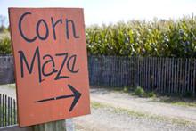 Corn Maze Sign Next To A Field...