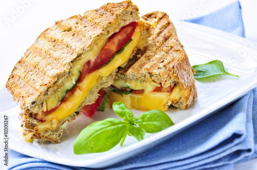 Grilled cheese and tomato sandwich on a plate