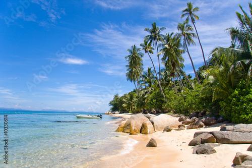 Foto-Schiebegardine Komplettsystem - palm beach