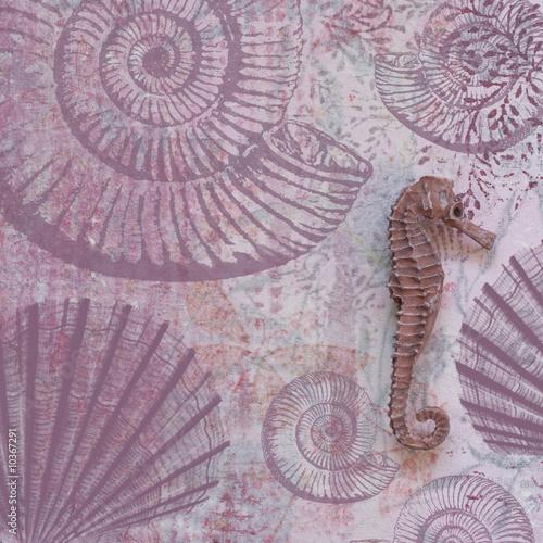 Foto-Stoff bedruckt - Seepferd auf Collage Hintergrund (von Sunnydays)
