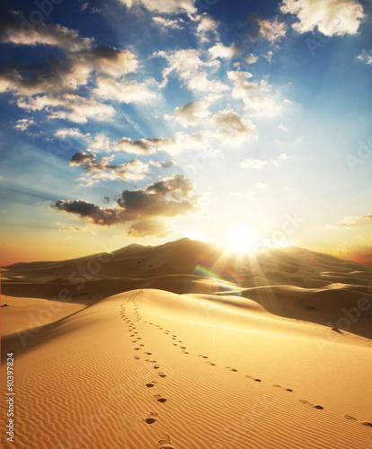 Poster de jardin Desert de sable Desert