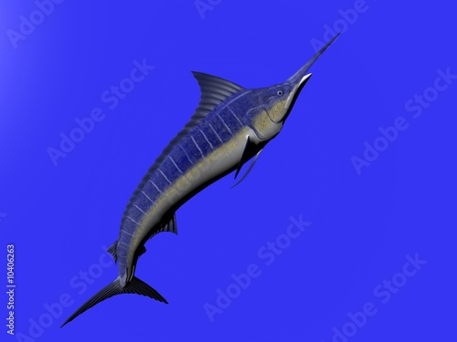 Photo  3D illustration of a marlin isolated over blue
