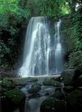 Mały wodospad głębokiego lasu w słoneczny letni dzień - 10439058