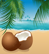 canvas print picture - Coconut on the beach under palm tree, vector illustration