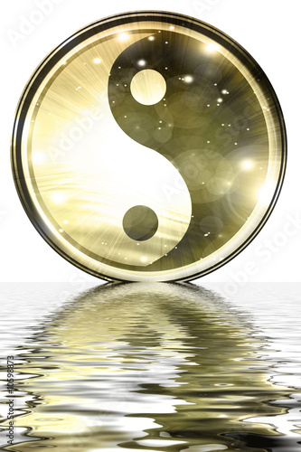 Canvastavla  Yin Yang sign