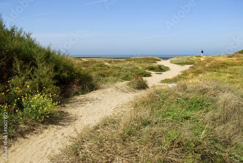 Spoed Foto op Canvas Noordzee Dunes de la Cotinière à l'île d'Oléron