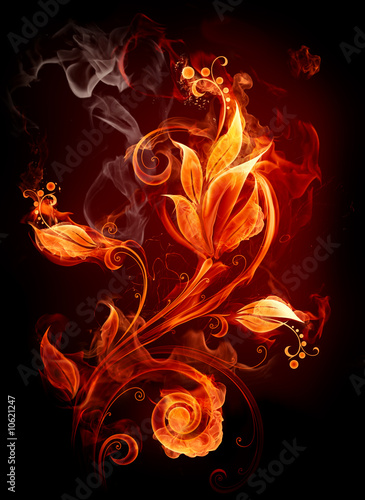 Recess Fitting Flame Fire flower