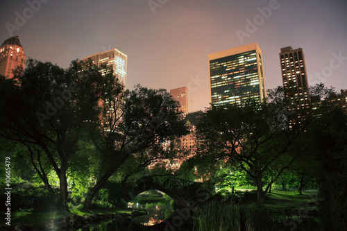 Fotografia Central Park in NYC