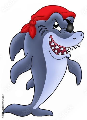 Photo Stands Pirates Pirate shark