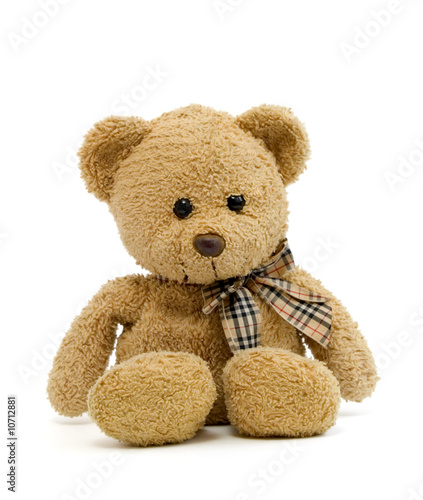 Fotografie, Obraz  teddy bear new 1