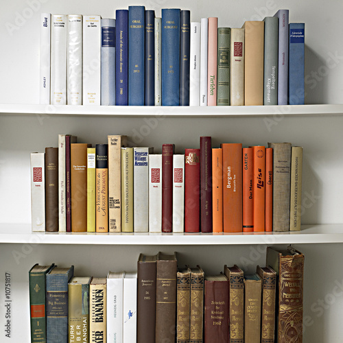 La pose en embrasure Bibliotheque bookcase 01