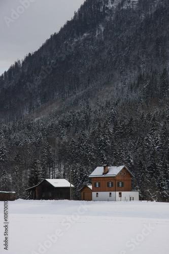 Österreich M44