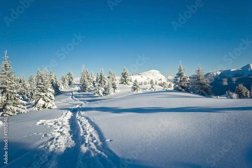 Fotomural neige belledonne